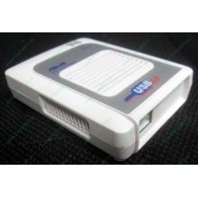 Wi-Fi адаптер Asus WL-160G (USB 2.0) - Ижевск